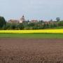 Sakralne zabytki Choroszczy w nowej wiosennej oprawie.