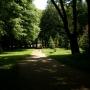 Konstantynów - Zabytkowy park