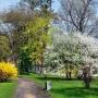 Kolory wiosny na plantach.