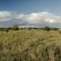 Terra incognita-porośnięta bujniej niż kazachski step.U północnego wylotu stare betonowe słupy energetyczne, nikomuniepotrzebne i zapomniane. Na prawej flance stara rzeźnia w rozsypce.To właśnie aktualnie Góra Zamkowa w swojej krasie.