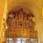 Obecne sejneńskie organy wybudował w 1907 roku Jonas Garalevicius, litewski organmistrz z Kowna. Poddane gruntownej renowacji w 2011 roku odzyskały dawny blask.