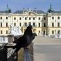 Barokowy Park Pałacowy