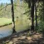 Widok z Uroczyska na rzekę Rospudę.Można spłynąć tu kajakiem.