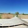Skit zaprasza również pielgrzymów przybyłych tutaj rzeką Narew. Przy widocznej z lewej stronie małej przystani można zostawić kajak i udać się do pustelni ojca Gabriela. Z prawej widać ustawione za płotkiem ule.