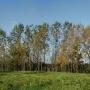 Zachodni skraj Góry Zamkowej.