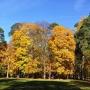 Park jesienią jest najpiękniejszy.