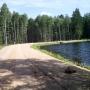 Leśny zbiornik wodny
