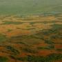 Loty balonem - Rzeka Narew i okolice.